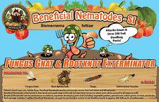 5 Million Live Beneficial Nematodes Sf - Fungus Gnat/Rootknot Gall Exterminator