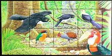 C713 SOLOMON ISLANDS 2004 Birds, Raptors etc, Mini Sheet Mint NH