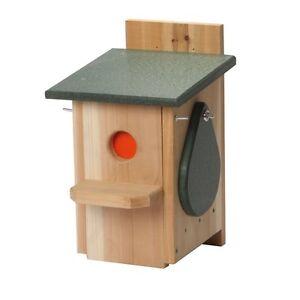 Ravenox Sparrow and Starling Eliminator Trap