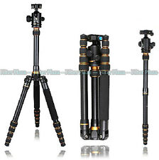 Pro Magnesium Aluminium Tripod Monopod Beike Bk-777 Ball Head for DSLR Camera