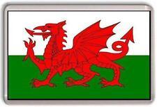 Wales Welsh Flag (Cymru or Y Ddraig Goch) The Red Dragon Fridge Magnet #1