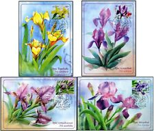 Russia-2021. Flora of Russia. Flowers. Irises listed in the Red Book 4KM