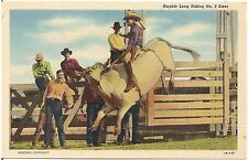 Hughie Long Riding No. 9 Steer Cowboy Rodeo Western Postcard