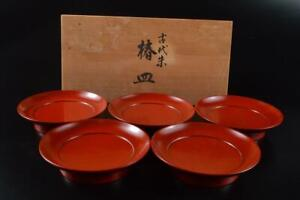 Authentic Japanese BN Dia Large Lacquer Serving Bowl Ancient Red 28cm