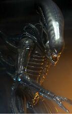 Alien Big Chap - 1/4 Scale Figure-Limited Edition-Neca