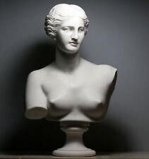 APHRODITE Goddess Venus de Milo Bust Head Greek Cast Marble Sculpture 20.8 in