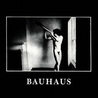 Bauhaus - In The Flat Field [CD]
