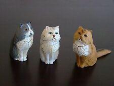 Three Japan KAIYODO FURUTA New Choco Egg Animal Pet Miniatures Persian Cats
