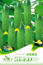 1 Pack 20 Fruit Cucumber Seeds Mini Cuke Cucumis Sativus Organic C100