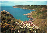 The Bay, Petit Port, Guernsey, Channel Islands Rare Picture Large Postcard