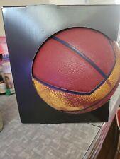 "Nike Basketball Lebron James Lakers Full Size 29.5"" Indoor/Outdoor NBA - NEW"