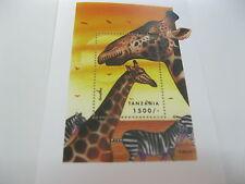 Tanzania-Fauna-Animals-Giraffe