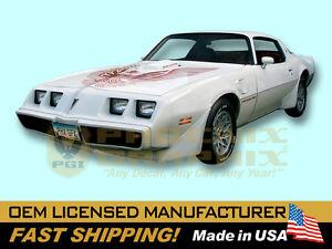 1981 Pontiac Firebird Trans Am Decals & Stripes Kit