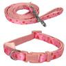 Soft Cushion Webbing  Pink Hearts Adjustable Puppy Dog Collar & Long Lead Set