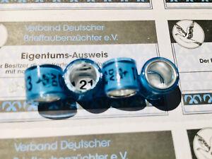 Brieftaubenringe DV 2021 neu mit Eigentums-Ausweisen 4 Taubenringe pigeon rings