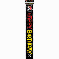12ft Pirate Fun Happy Birthday Foil Banner Boys Black Party Decoration Skull
