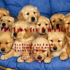 CD - Doggies for Dummies - 30 eBooks with Resell Rights