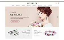 Earn Money Work At Home Jewellery Dropshipping Store Business Opportunity