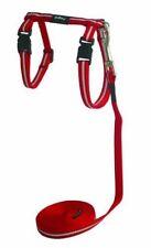 Rogz Alleycat Harness & Lead Set Red 11mm