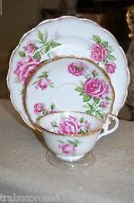 MINT Royal Standard England ORLEANS ROSE Bone China Trio/Cup Saucer Plate/Gold