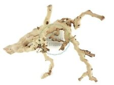 Natural Grapewood Vine Branch Sandblasted Gardening Crafts Reptile 10-15 Inch