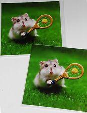 Hámster jugar a tenis tarjeta de saludos en blanco adentro GC 50