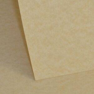 Natural Parchment Paper 145gsm - A4 | 10 Sheets