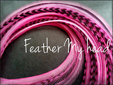 """Super Long 11""""- 14"""" Feather Extension For Hair,  Whiting Eurohackle, Bubble Gum"""