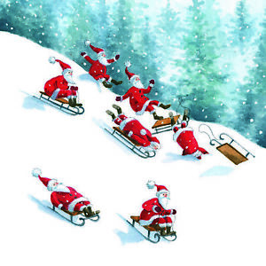 Charity Christmas Card Sledging Santa Snow Pack of 10 Small Cards Festive Snowy