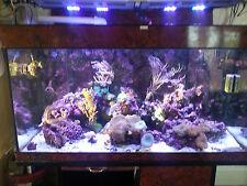 Aquarium 500litres aqua medic with cabinet
