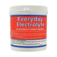 Equine Products UK Everyday Electrolyte Horse Supplement BZ3453