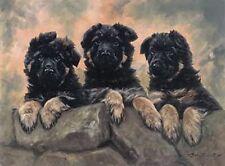GERMAN SHEPHERD DOG GSD ALSATIAN ART LIMITED EDITION PRINT - by John Trickett