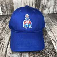 Sherwin Williams Cover The Earth Strap Back Hat Baseball Cap Blue Adjustable OSF