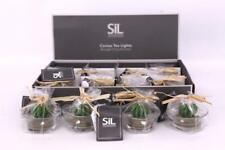 Sets Small Cactus Tea Light Candles In Glass Pots Party Wedding Table Favours