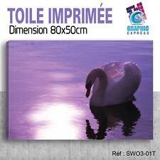 80x50cm - TOILE IMPRIMÉE TABLEAU  POSTER DECO - SWAN - SIGNE - OISEAUX - SW3-01T