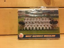 2007 Gateway Grizzlies Team Set