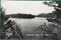 Vintage Michigan MI Real Photo RPPC Postcard Mirror Lake Porcupine State Park