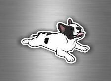 Decal sticker vinyl decor tuning car motorcycle biker french bulldog dog