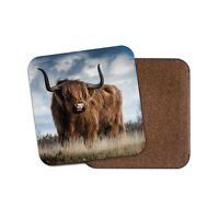 Funny Highland Cow Coaster - Cattle Scotland Hairy Fluffy Cool Bull Gift #13165