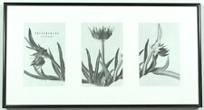 Pottery Barn Duet Metal Gallery Frame 4 x 6 Silver Frame Black Matte #1262930