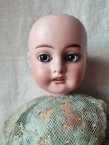 Ancienne jolie poupée tête porcelaine numérotée 3, 50 cm