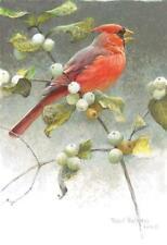 Cardinal and Snowberries by Robert Bateman