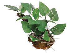 Plant with Rock Base Terrarium Vivarium Ornament Decoration