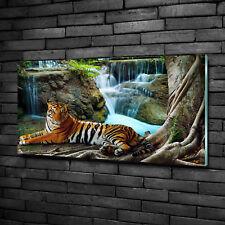 Glas-Bild Wandbilder Druck auf Glas 100x50 Deko Tiere Tiger Wasserfall