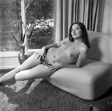 8x10 Print Sexy Model Pin Up Brunette 1960's Nudes #5502408