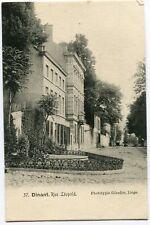 CPA - Carte Postale - Belgique - Dinant - Rue Léopold (D12380)