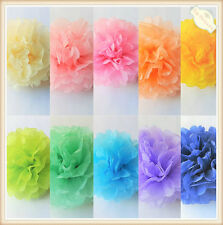 Tissue Paper Pom Poms Fans Honeycomb Balls Living Room Decor Wedding Party Baby