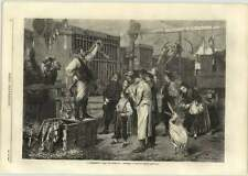 1866 M Meyerheim Artwork, A Menagerie, Wonderful Humour, Atmosphere