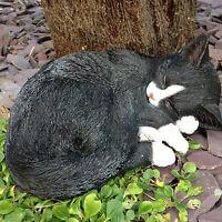 Black and White Cat Sleeping  Vivid Arts Garden Ornament Indoor/Outdoor