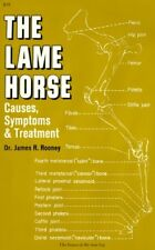 Lame Horse: Causes, Symptoms and Treatment